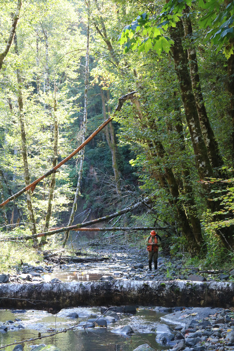 Enhancing Habitat Saves Lives