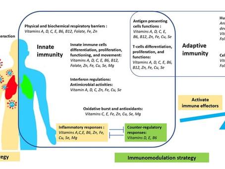 Micronutrients as immunomodulatory tools for COVID-19