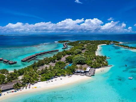 Sheraton Maldives Full Moon Resort & Spa Celebrates 100th Coral Frame Milestone