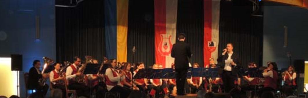 Musikverein Matzen_Konzert_13.05.2017.pn
