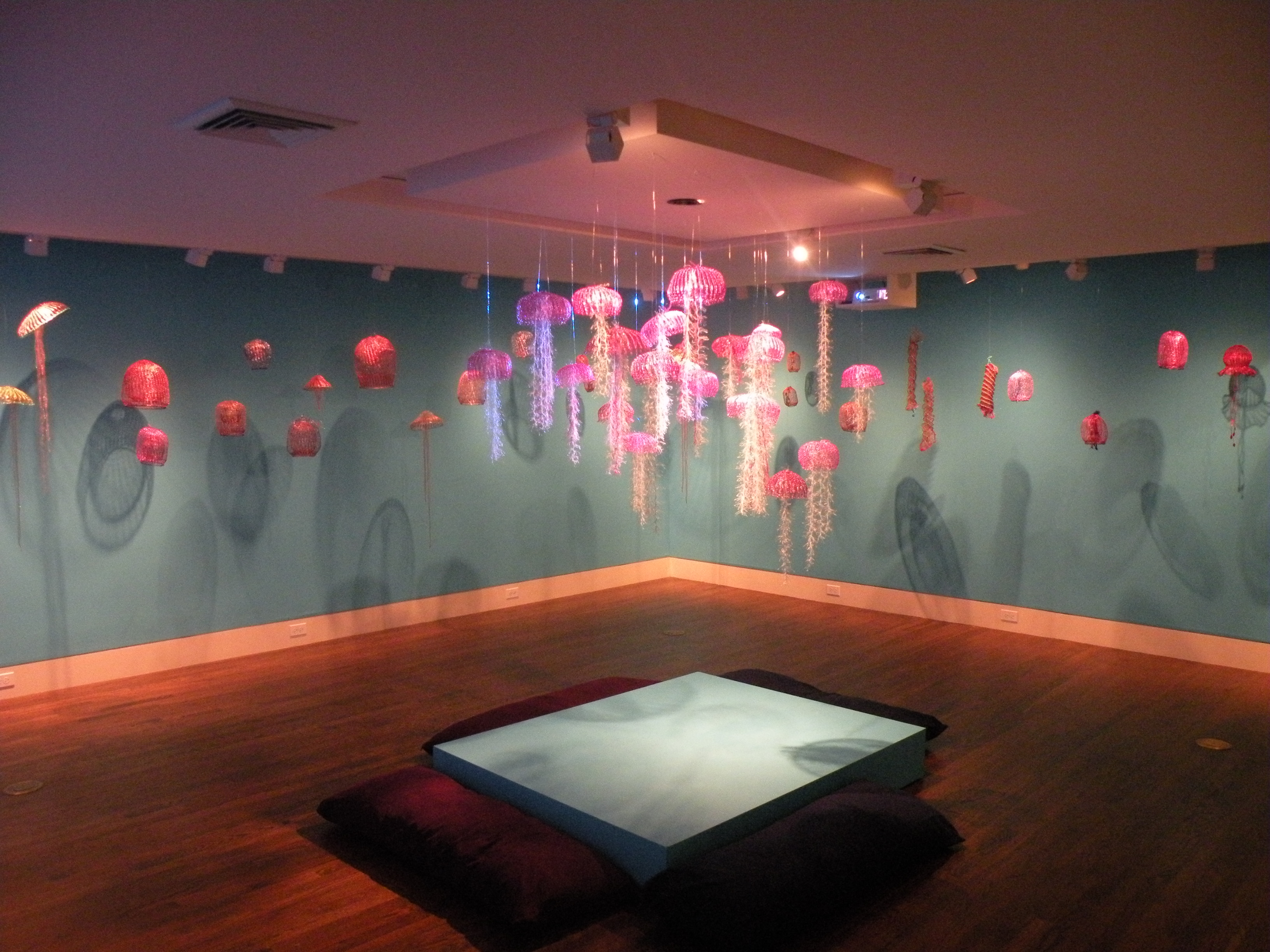 Sea_Jellies_center[1]