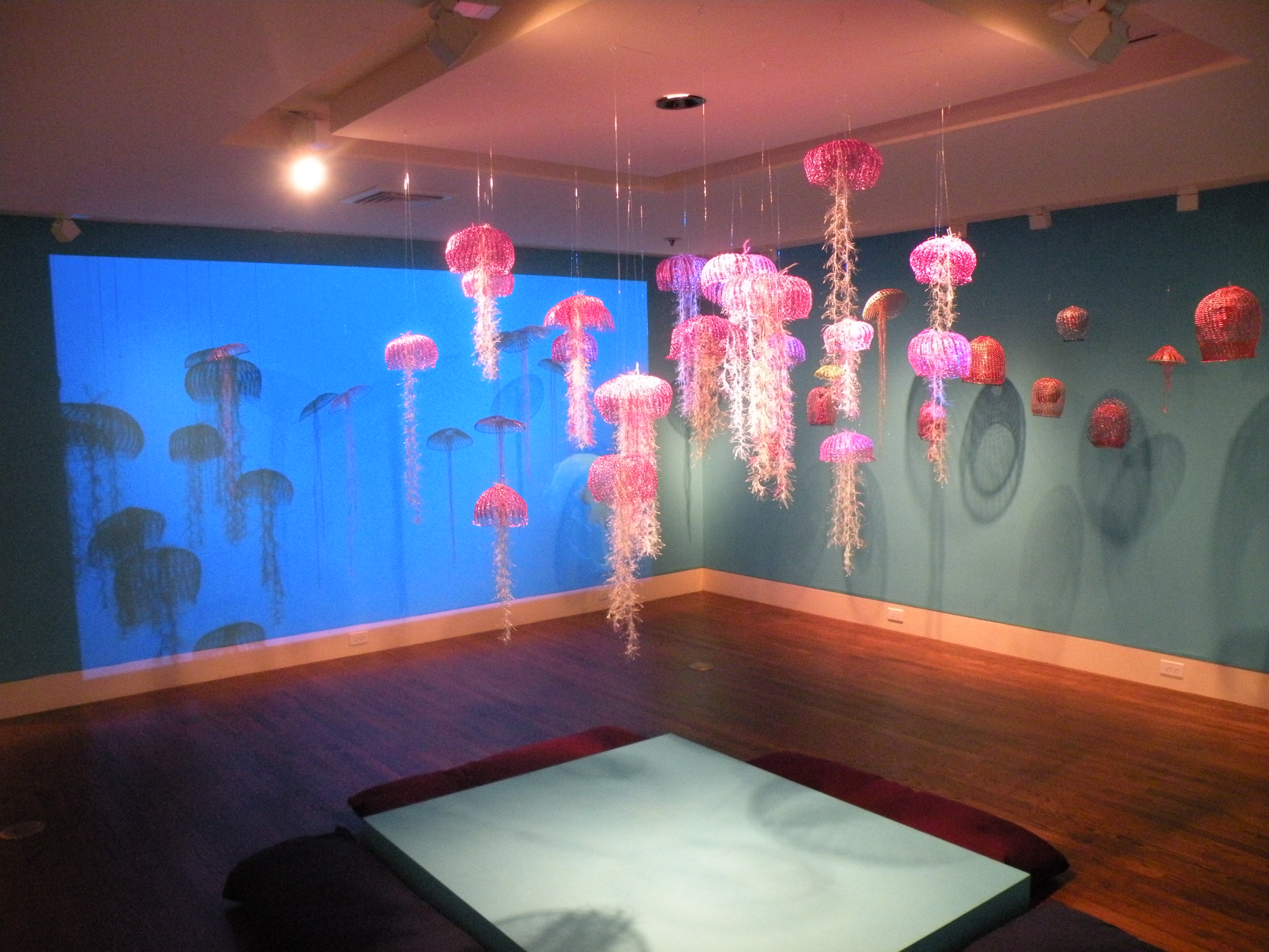 Sea_Jellies_projection_5[1]