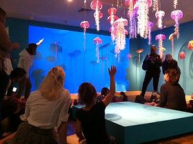 monterey museum of art; arline fisch; sea jellies