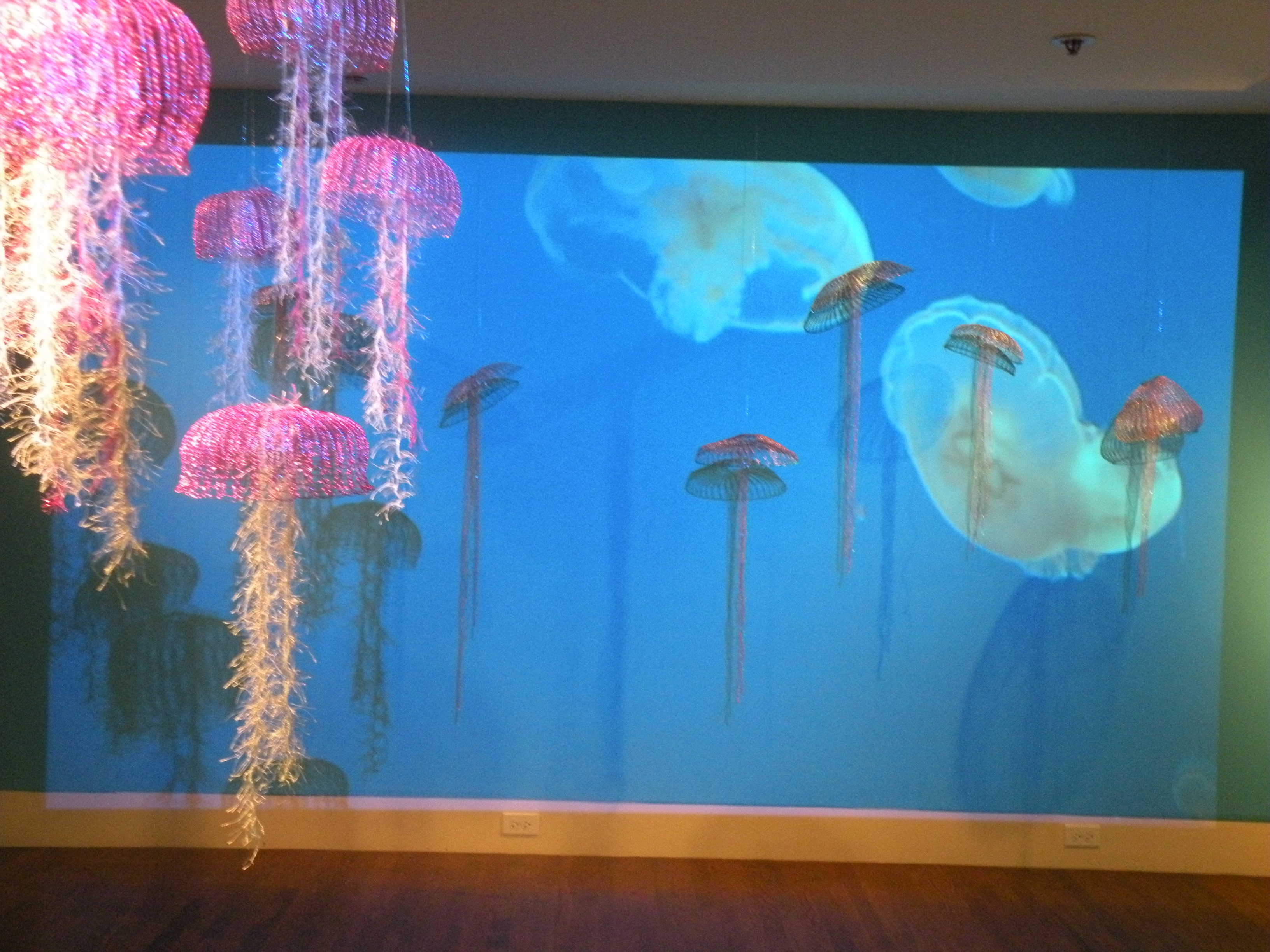 Sea_Jellies_projection_1[1]
