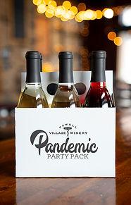 Pandemic.Party.Photo.jpg