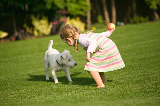 Healthy Grass is good for play