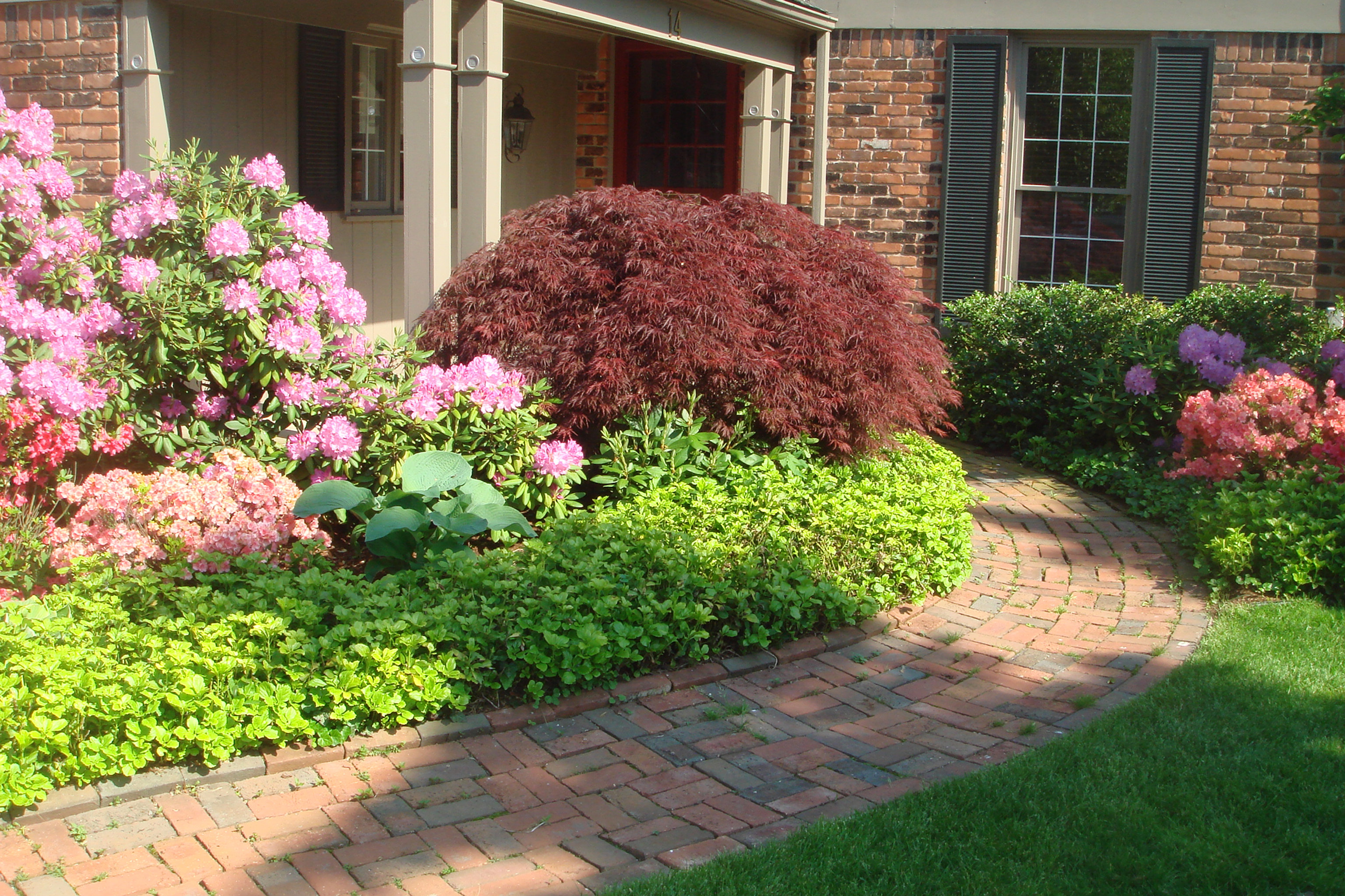 Lucia Landscaping | Professional Landscape Services in Metro ...