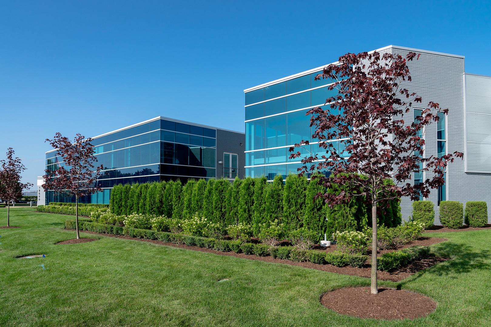 Expert Lawn, Tree & Shrub Care