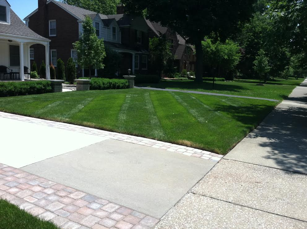 Routine Lawn Maintenance