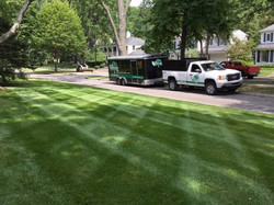 Lucia Landscaping Lawn Lines