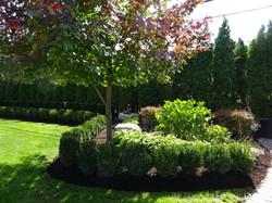 Tree & Shrub Trimming Grosse Pointe