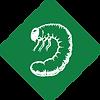 lawn fertilization company grub control application