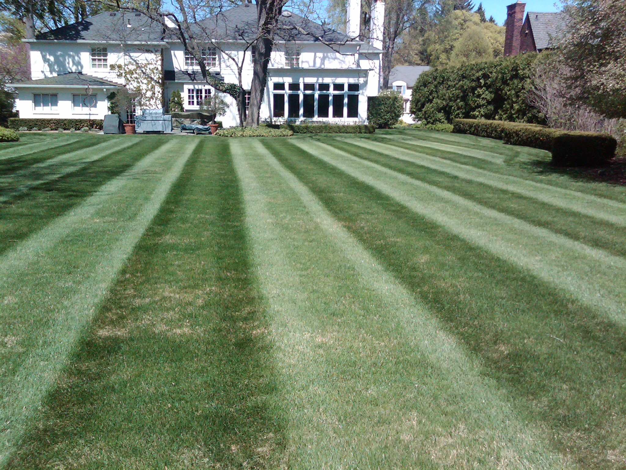 Weekly Lawn Maintenance Grosse Point