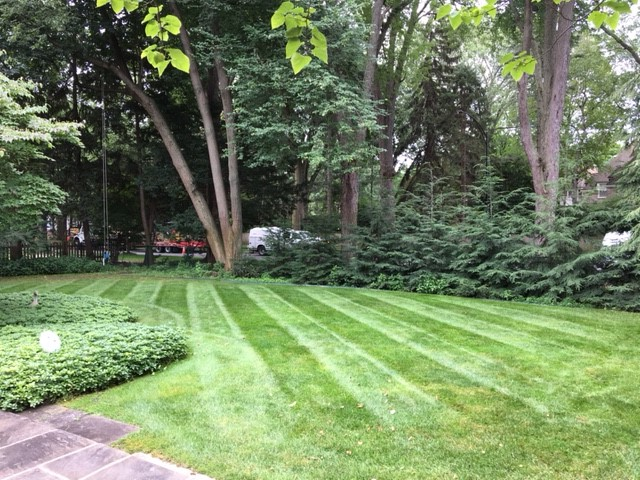 Full Service Landscape Maintenance