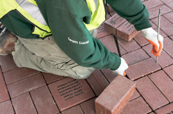 Team Lucia Professional Brick Paving