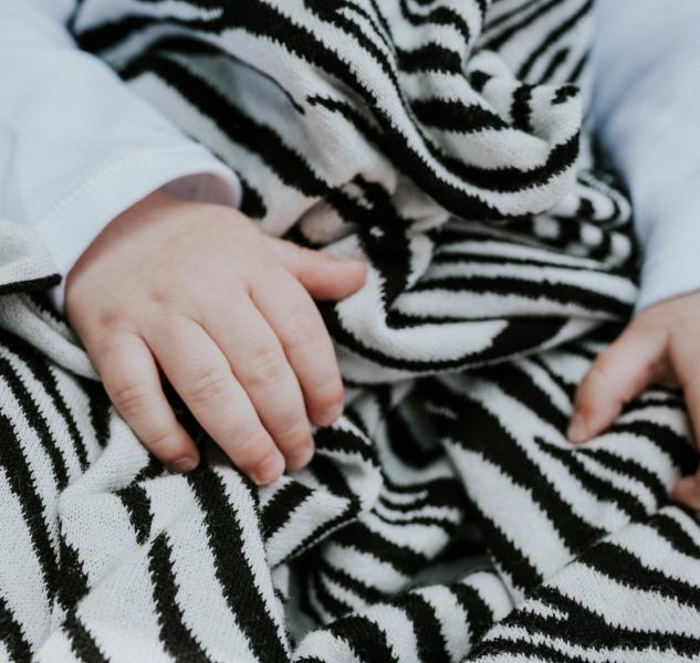 Zebra Blanket