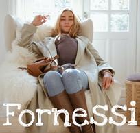 Fornessi