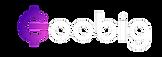 Goobig_Logo_White.png