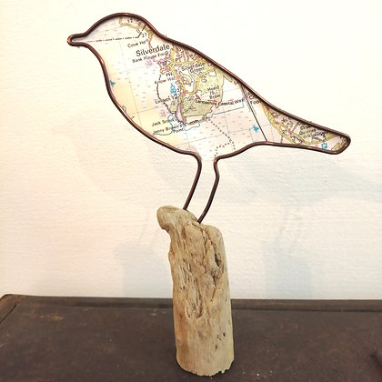 Silverdale bird