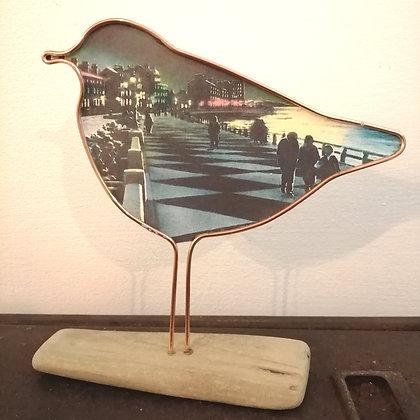 Vintage art morecambe bird
