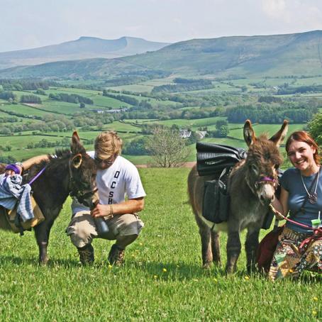 Walk with Dinkey Donkeys