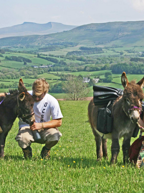 Walk with Dinkey Donkeys