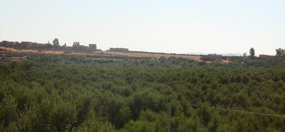 Morrocan Resort View
