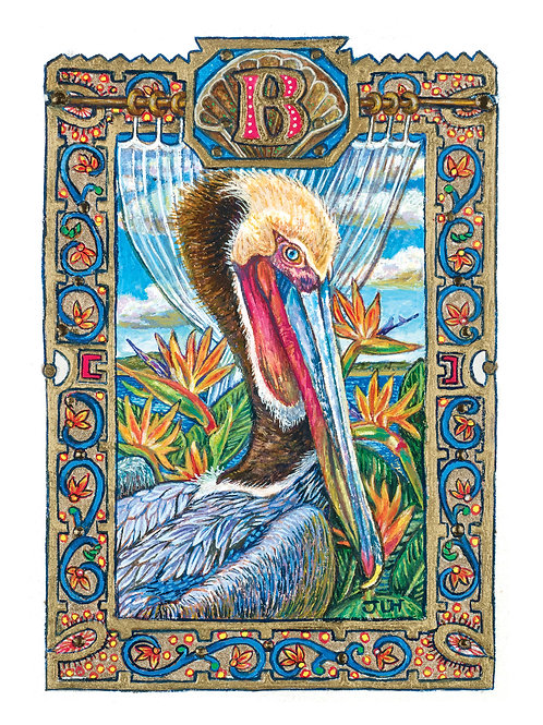 B  The Brown Pelican - Paper Giclee Print
