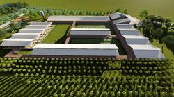 Arquitetura Rural - Granja de Suínos