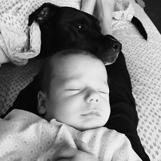 A baby sleeps on their parent's legs while their dog friend lays their head on the baby's head.