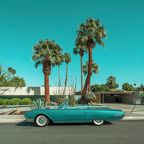 Twin Palms T-bird