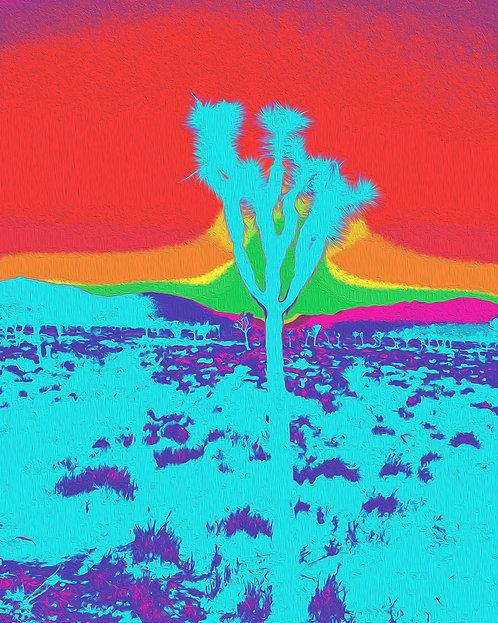 Joshua Tree II-II