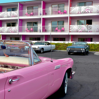 Pink TBirs Saguaro.jpg