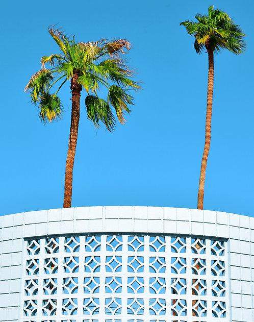 Breeze Blocks and Palm Trees