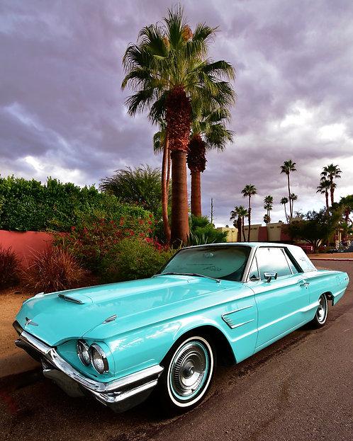 Turquoise Thunderbird