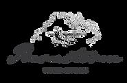 barnstorm logo 2020.png