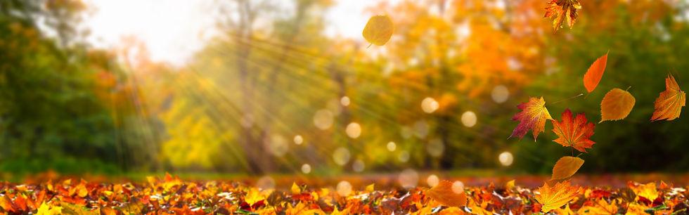 Yoga Bremen in der YEP Lounge im Herbst und Winter - Ruhe finden, Entspannung