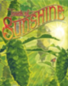 Touch of sunshine logo.jpg