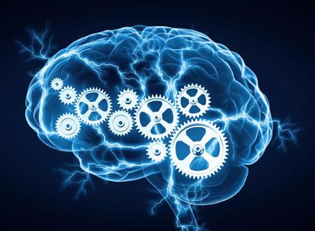 O cérebro não faz só o que parece...
