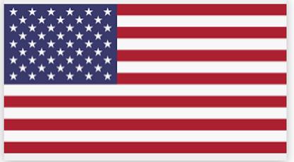 American Flag Democrat Fright Night
