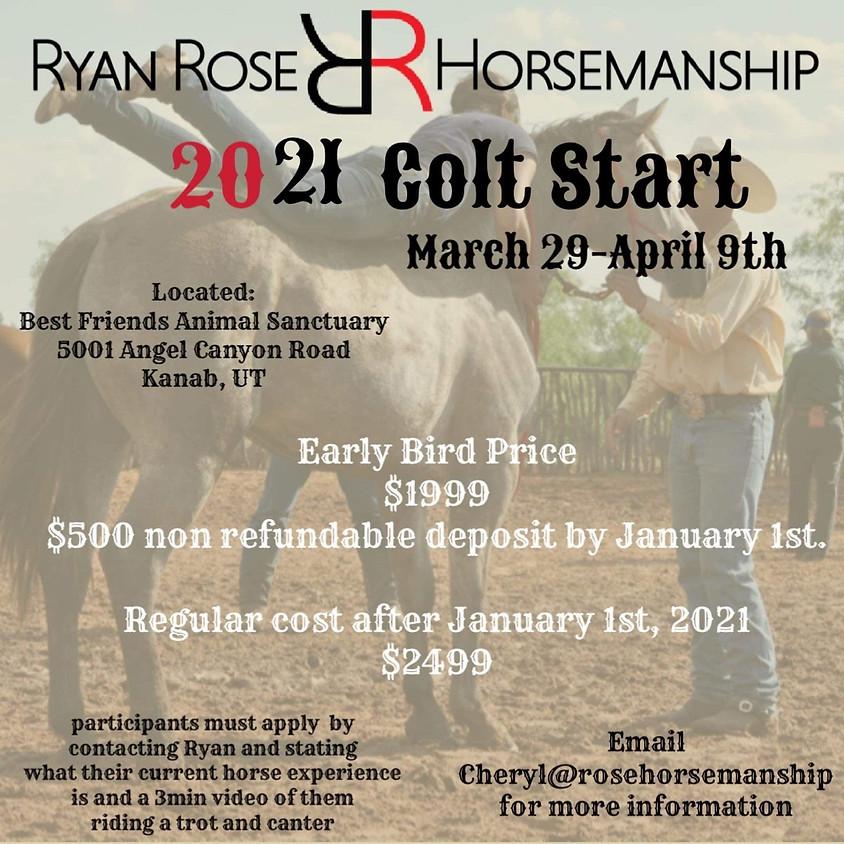 Utah Colt Start