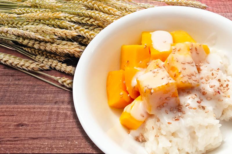 Mango 800 - Basil Rice | Thai food Brookline