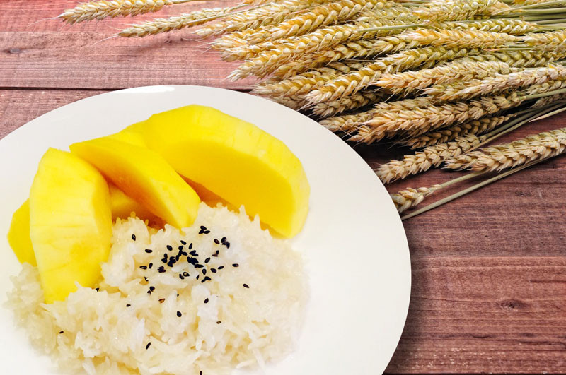 Mango Sticky Rice - Basil Rice | Thai food Brookline