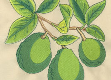 Avocado Machine Embroidery design