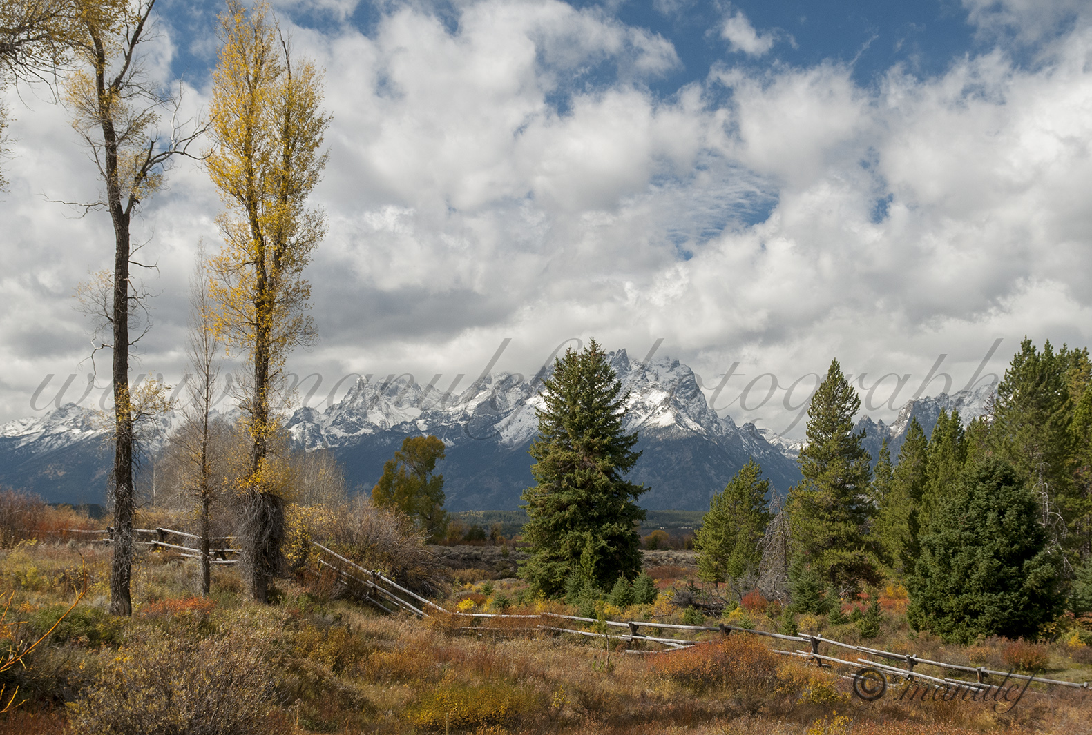 Wyoming  016