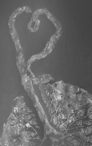 tree of life obsidian.jpg