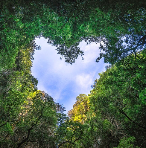heart sky.jpg