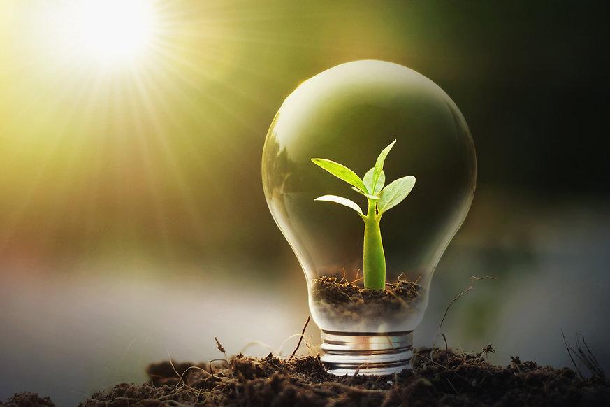 concept-idea-saving-energy-young-plant-l