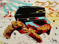 Civil Tortoise 12x16in 2014 (2).jpg