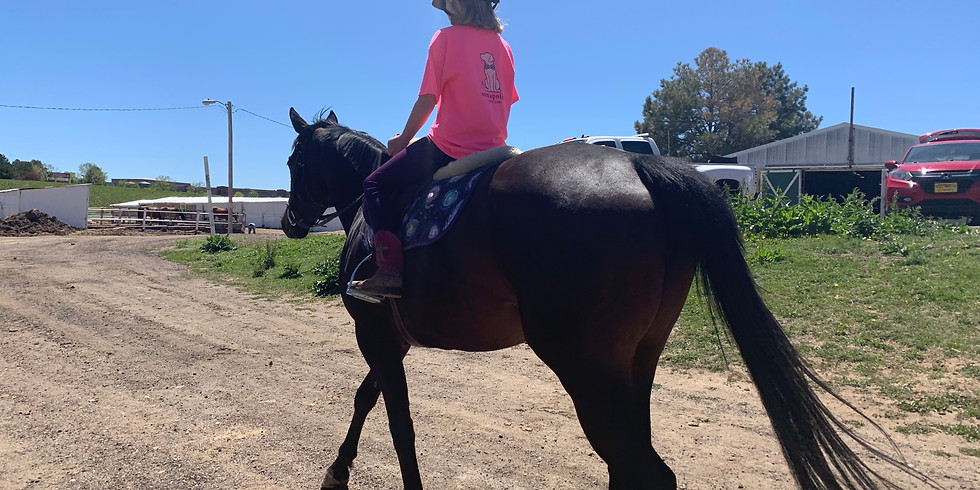 SUMMER HORSE CAMP!